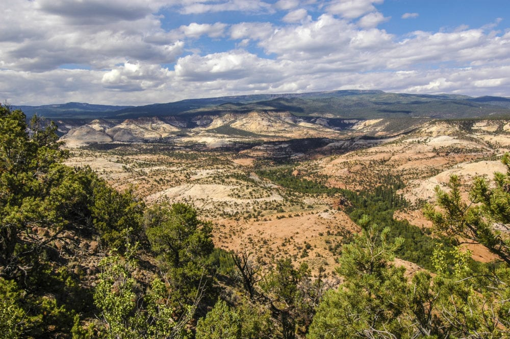 View of Boulder Mountain from a mesa in the Escalante National Monument. Utah canyon country. American Southwest.