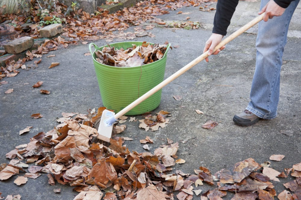 Working Hands Sweeping Autumn Leaves